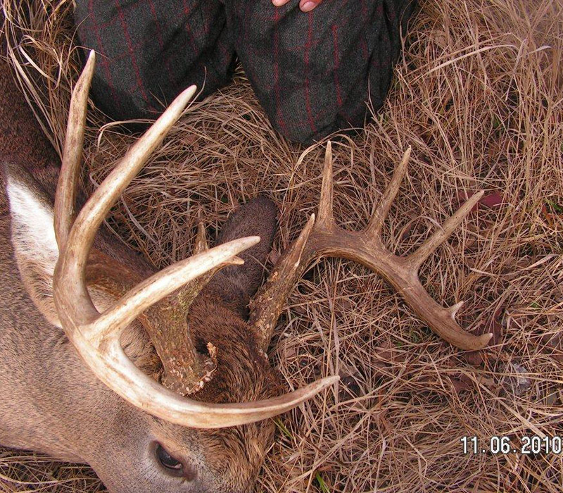 A close-up of the rack from Doc's 2010, 10-pointer