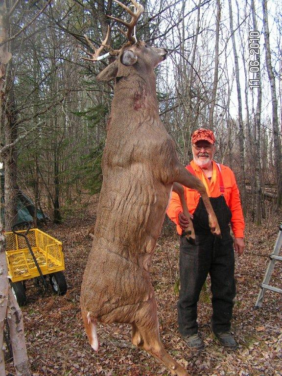 Doc's huge 2010, 10-pointer hanging in camp.